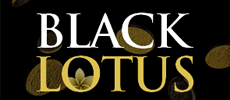 Use UKASH at Black Lotus Casino