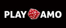 Visit Playamo Casino