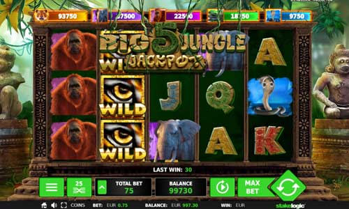 Big 5 Jungle Jackpot slot