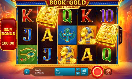 Book of Gold Multichance casino slot