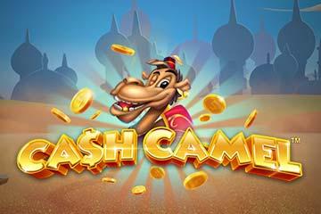 Cash Camel free slot
