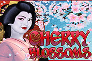 Cherry Blossoms slot Nextgen Gaming