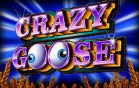 Crazy Goose free slot