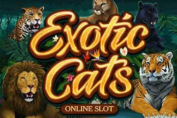Exotic Cats slot Microgaming
