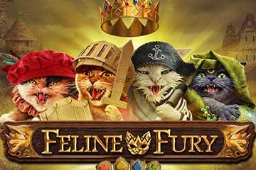 Feline Fury free play demo