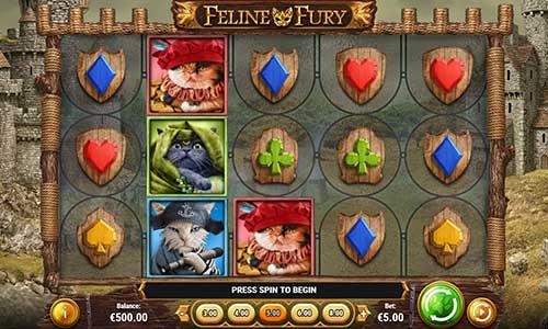 Info about Feline Fury