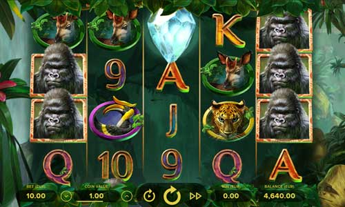 Gorilla Kingdom free slot