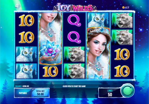 Icy WIlds free slot