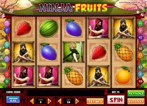 Ninja Fruits free slot
