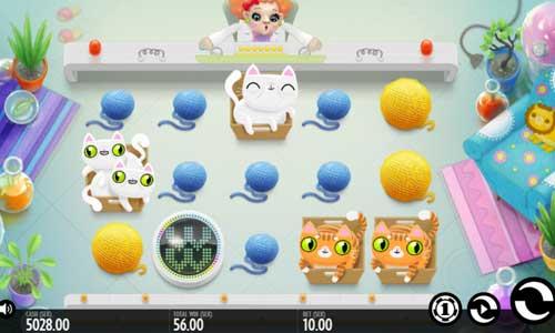 Not Enough Kittens free slot