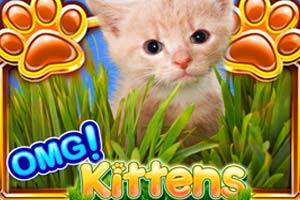 OMG Kittens casino slot