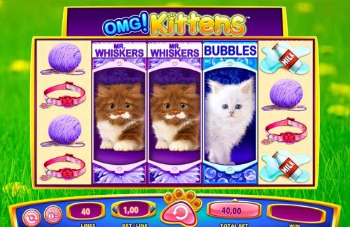 OMG Kittens free slot