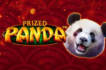 Prized Panda