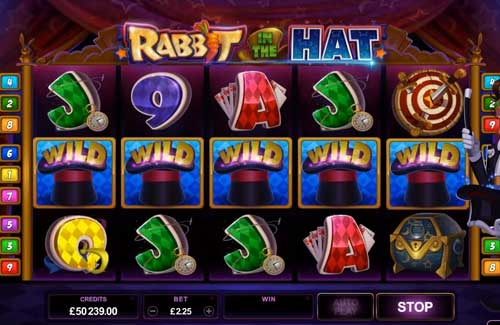 Rabbit in the Hat free slot