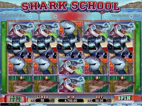 Shark School free slot