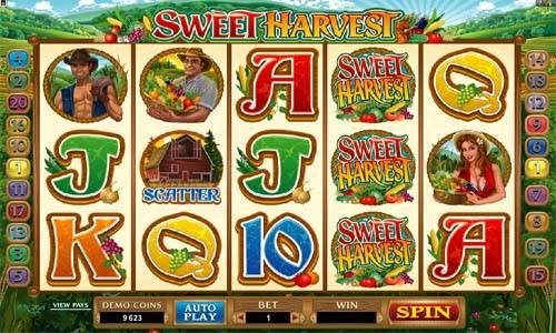 Sweet Harvest free slot
