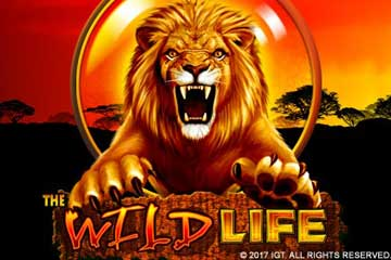 The Wild Life slot IGT