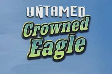 Untamed Crowned Eagle casino slot