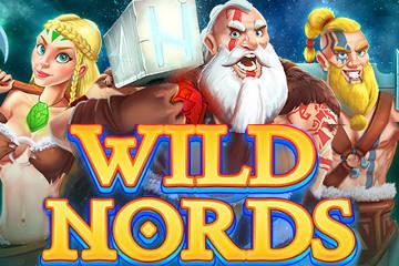 Wild Nords casino slot