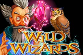 Wild Wizards casino slot